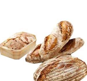 בסיס לחם שיפון 3